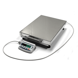 Industril scales service